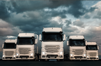 14 000 kamiónov V roku 2018 takmer 14 000 kamiónov zabezpečovalo vývoz predaných Terran škridiel k našim zákazníkom